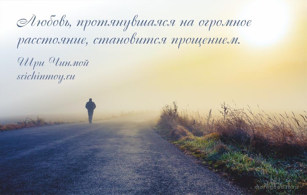10.jpg_1445751603
