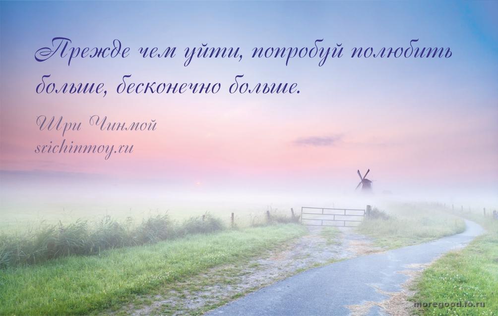 17.jpg_1445751629