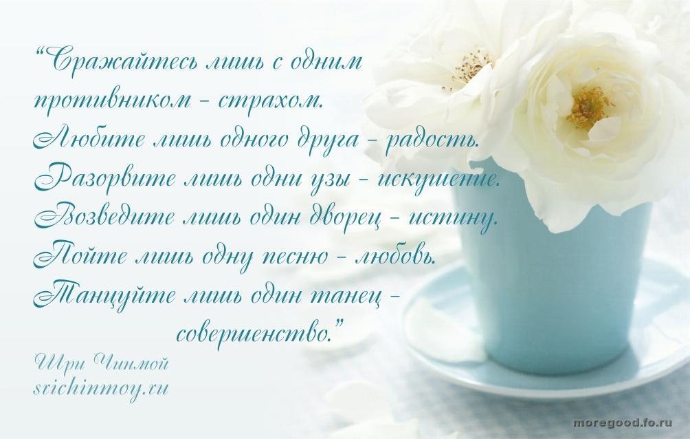 51.jpg_1445751783