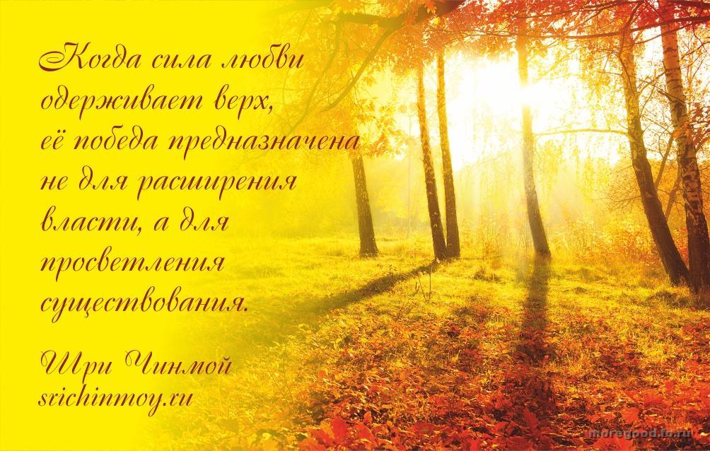 56.jpg_1445751806